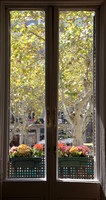 Inside Outside Barcelona IMG_4448 v1 cropped